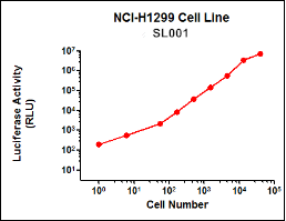 SL001 (NCI-H1299 Lung Cancer Cell Line)