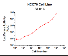 SL016 (HCC70 Breast Cancer Cell Line)
