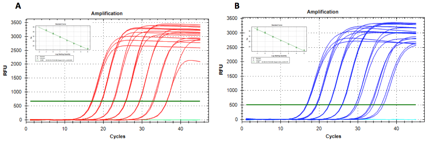 BlazeTaq RT-qPCR Amplification Plots