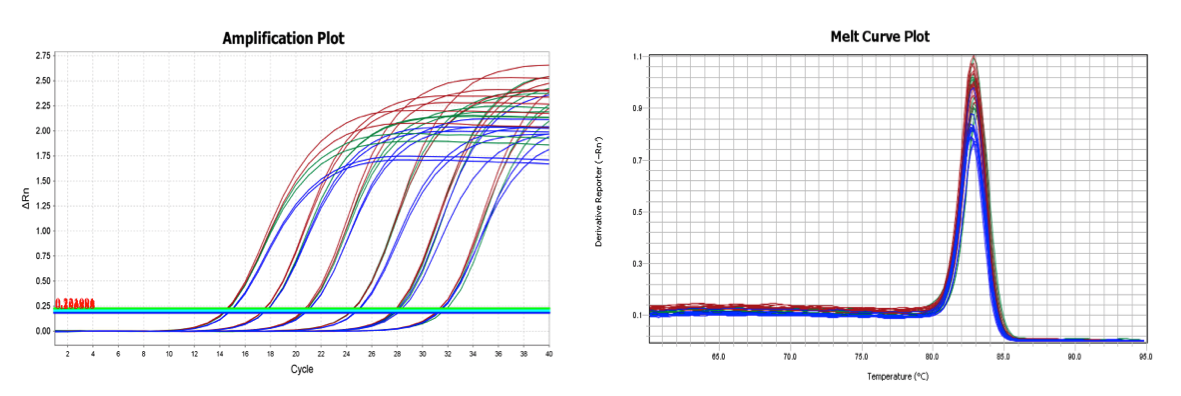 two-step RT-qPCR amplification