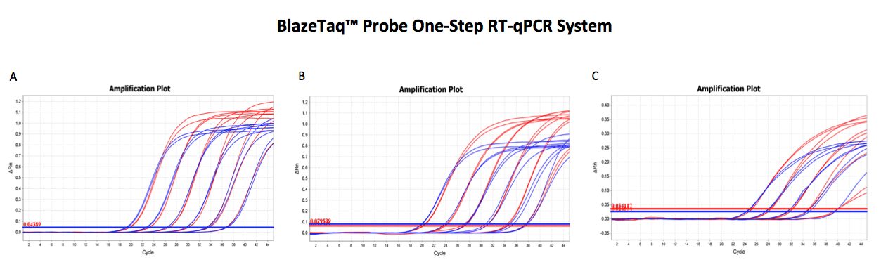 Probe RT-qPCR Amplification